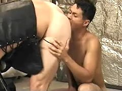 Asian gay guy wench principal sucks off then benefits from hammered