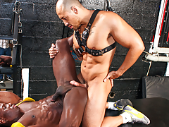 horny hunk shoves his bog cock in hungry tense asshole