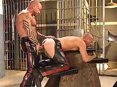 Fetish sub doggy getting pumped heavy from behind