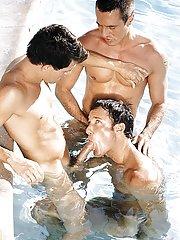 Peter Wilder::David Bradley::Spike in Homo XXX Pictures