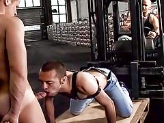 Sexual act Pigs : Eduardo Cortez, Thom Barron
