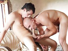 Knob Delicate Dads, Scene 01