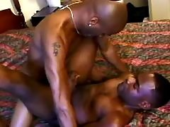 Black stallion pounds ache gay floozy