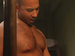 Bear hunk sucked by mature gay