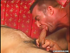 Horny dilf sucks hard knob