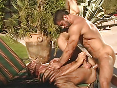 Mature bear humps muscle dilf in nature