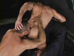 Muscle gay licked by hairy dilf