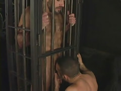 Hairy seasoned faggot sucked in cage