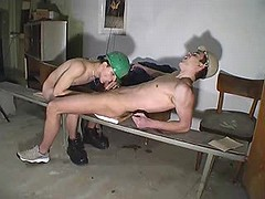 Young twink coworkers deed some slurp job in office
